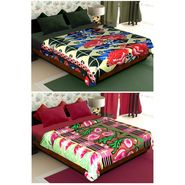 Set of 2 Polyester Double Size Printed Blanket-CA_1211-1215