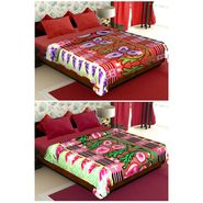 Set of 2 Polyester Double Size Printed Blanket-CA_1212-1215