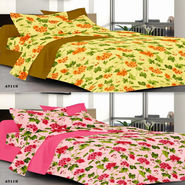 Valtellina Set of 2 100% Cotton Double Bed Sheets with 4 Pillow Covers-YM-62-63_001