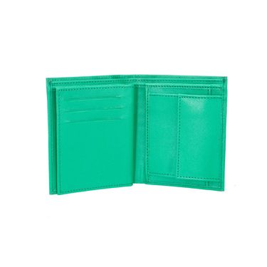 Mango People Stylish Wallet For Men_Mp102gr - Green