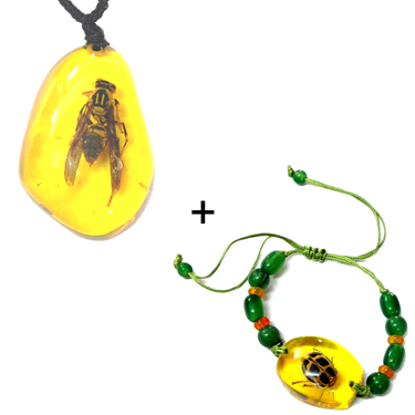 Fengshui Good Luck Charm Combo