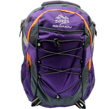 Donex Polyster Laptop Backpack RSC00664 -Violet