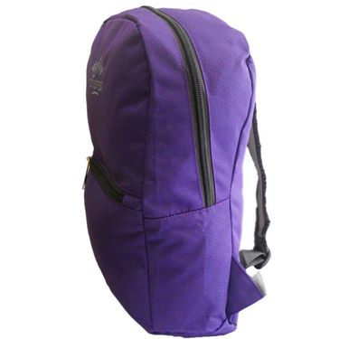 Donex Small size light weight College Backpack Purple_RSC00848