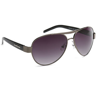 Alee Metal Oval Unisex Sunglasses_152 - Purple