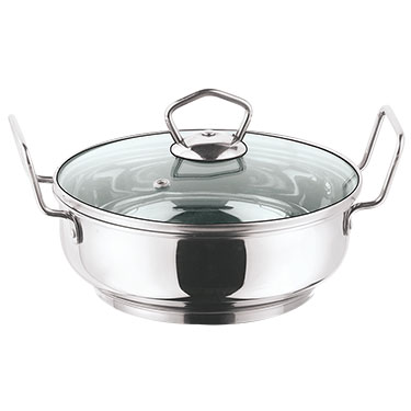 Vinod 202 240mm Induction Friendly Kadai with Tempered Glass Lid - Silver