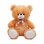Teddy Bear 1 Feet - Brown