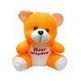Delhi Haat Teddy Bear