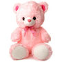 Teddy Bear 1 Feet - Pink