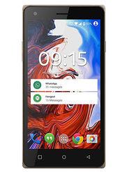 ZEN Admire Punch 5 Inch Lollipop (RAM : 1 GB : ROM : 8 GB) 3G Smartphone (Champagne Gold)